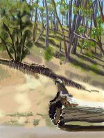 iPad finger painting en plein air. Heysen Trail. The Deanery.