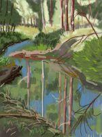 iPad finger painting en plein air. Heysen Trail artist. Cox's Creek. Heysen trail