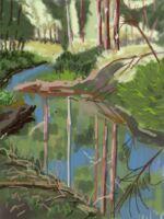 Caroline Johnson digital iPad finger painting en plein air. Heysen Trail artist. Cox's Creek. Heysen trail