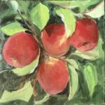 Caroline Johnson Adelaide Hills Art still life en plein air Adelaide Hills apples oil on Arches 20 x 20