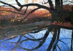 Caroline Johnson Artist Adelaide Hills Landscape Arts Prize Finalist An Instance of Awe oil on board framed 270 x 335
