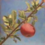 Caroline Johnson Artist en plein air Adelaide Hills art Autumn apple on branch against blue sky Oil on Arches 20 x 20