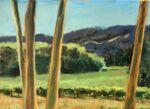 Caroline Johnson Artist Adelaide Hills Landscape en plein air Adelaide Hills wineries vineyards Piccadilly valley Oil on board 210 x 290