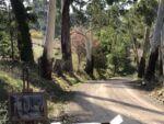 Caroline Johnson En plein Air Adelaide Hills Painting site Under Mount Lofty in country Lane
