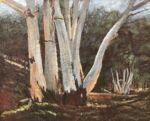 Caroline Johnson Flinders Ranges Artist Oratunga patawarta oil on marine ply 27 x 19 en plein air alla prima painting