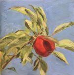 Caroline Johnson Artist One Summer Apple Oil on Arches 20 x 20 Apple on branch against blue sky